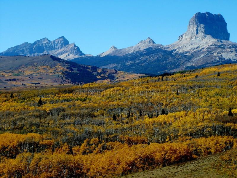 Fall View of Chief Mountain royalty free stock images