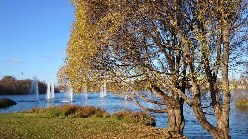Fall view on a park, Oulu, Finland. View on a park, , autumn stock image
