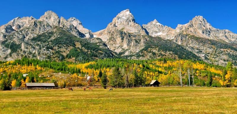Fall View at the Ranch royalty free stock image