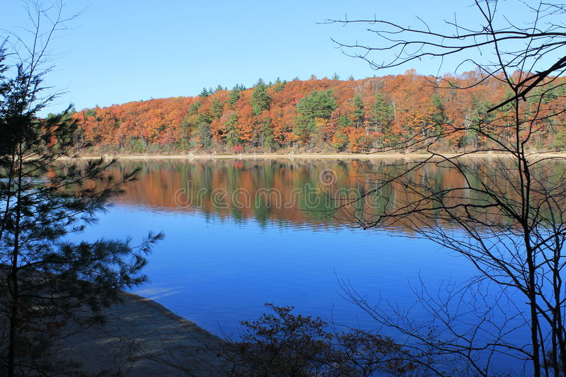 Fall at Walden Pond, Concord, MA. November morning oaks. Reflections on western trail of Walden Pond. Walking in the footsteps of Henry David Thoreau. The Brown stock image