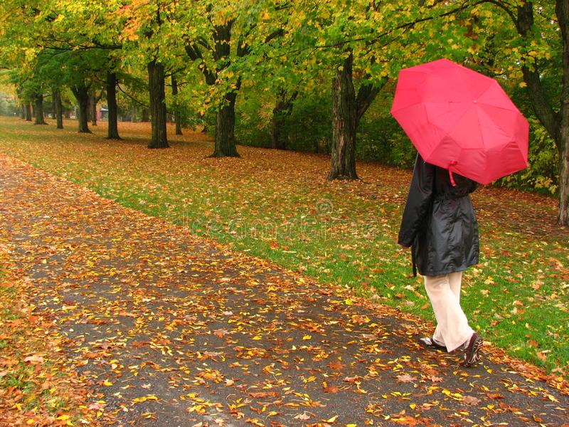 Fall - A walk in the park stock photography