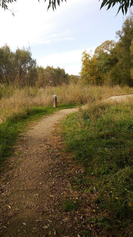 Fall walks stock photography