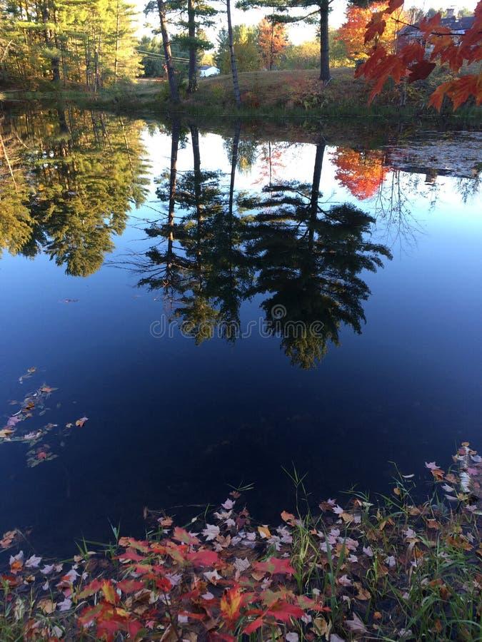 Fall-Wasser-Farben stockbilder