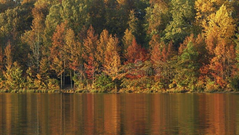 Fall water royalty free stock photos