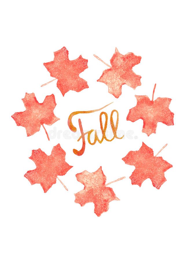 Fall watercolor hand drawn lettering and orange maple leaves. Fall watercolor hand drawn lettering and autumn colored maple leaves vector illustration