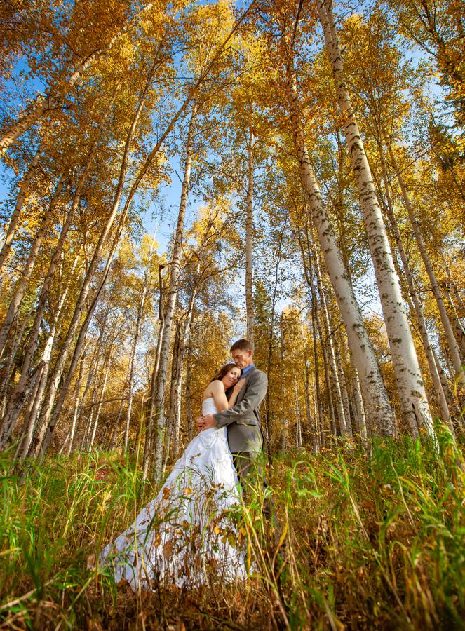 Bride and groom in outdoors during fall royalty free stock photos