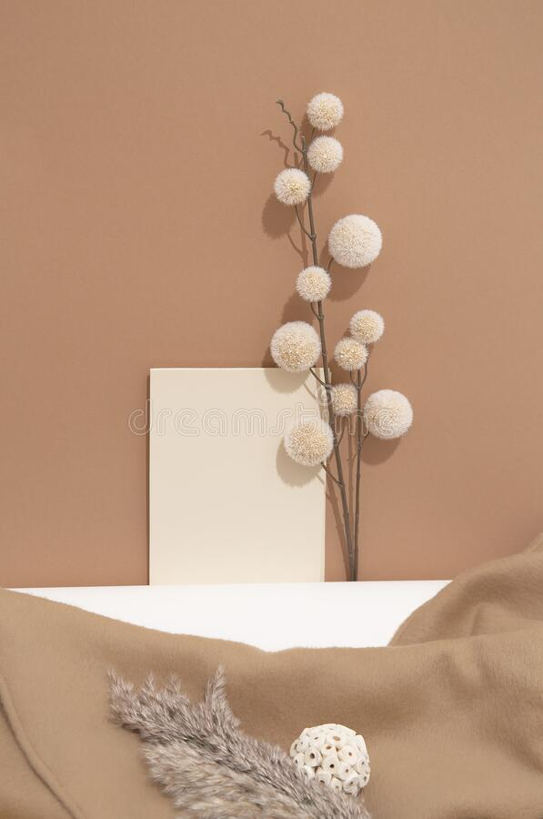 Fall Winter Cozy Background With Autumn Brunch Decor Mock Up Trendy Pastel Beige Brown Color Shades Minimalist Aesthetic Stock Photo Image Of Flat Minimalist 197236200