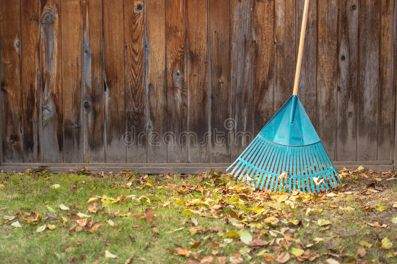 Fall yard work stock images