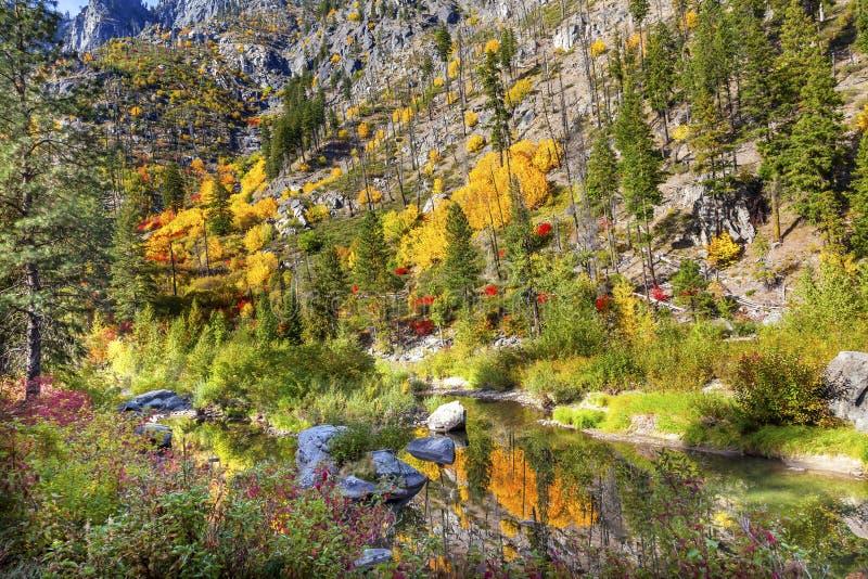 Fall Yellow Red Colors Reflection Wenatchee River Washington stock photo
