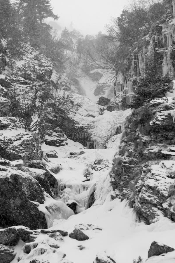 fallande bergsnow arkivbilder