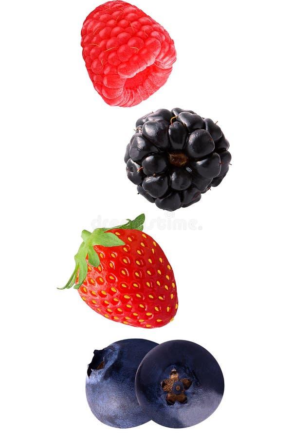 Fallande hallon-, jordgubbe- och blåbärfrukter som isoleras på w arkivbild