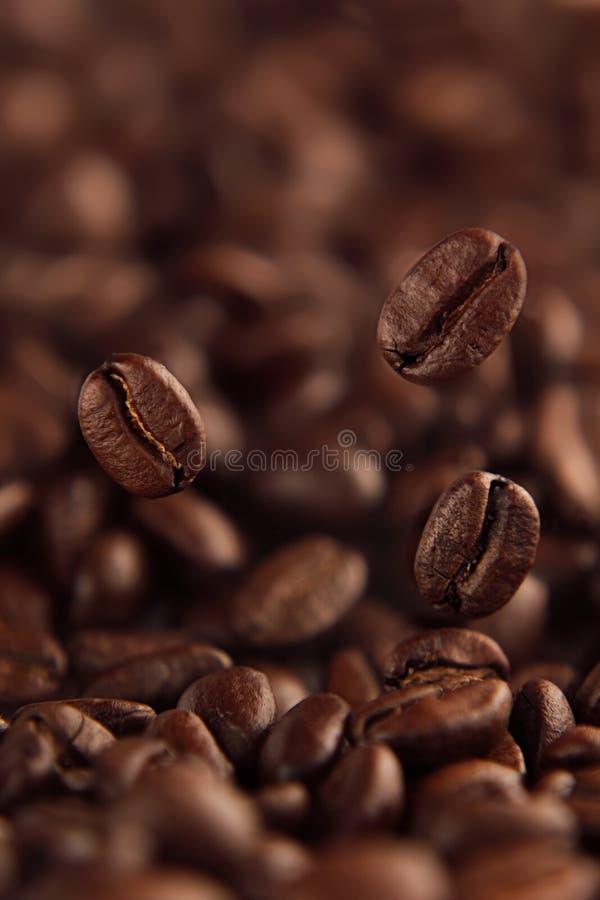 Fallande kaffeböna på bakgrund av högen av grillade bönor arkivfoton