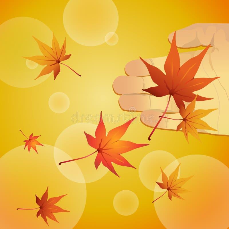 fallande leaflönn vektor illustrationer