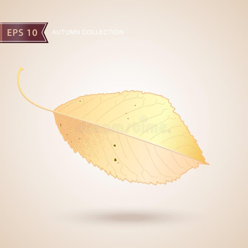 fallande leaves för höst 2008 leaves för leaf för dunge för torr fall för lufthöst guld- nära oaken oktober russia vänder som spo stock illustrationer