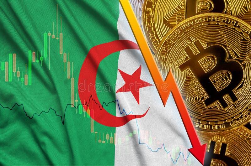 Fallande trend för för Algeriet flagga och cryptocurrency med många guld- bitcoins arkivfoto