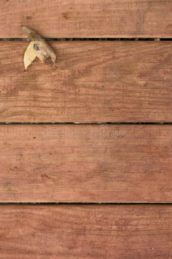 Fallblatt auf deckboards stockfotografie