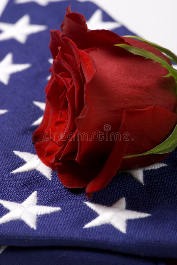 Download Fallen 3 stock photo. Image of honor, soldier, sadness - 1491158