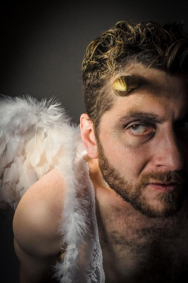 Fallen Angel Demon. Fallen angel satan with feathered wings and moody lighting stock images