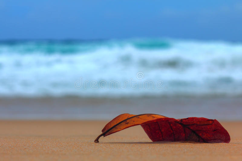 Fallen, the orange sheet lying on the beach. In the distance are storm surges stock image