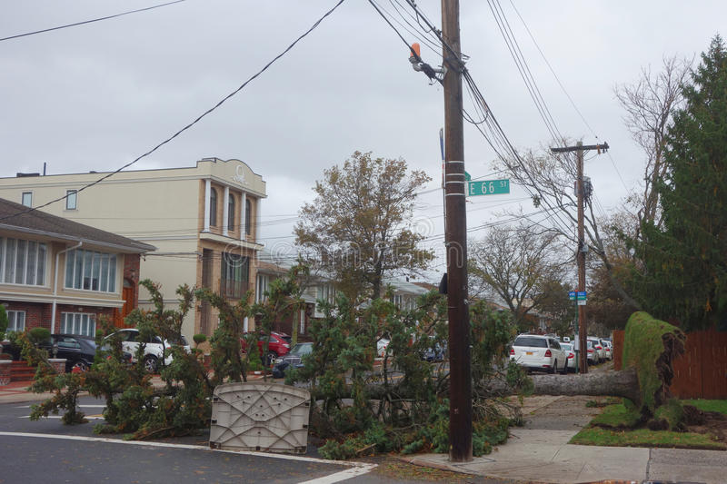 Fallen tree damaged house in the aftermath of Hurricane Sandy in Brooklyn, New York stock images