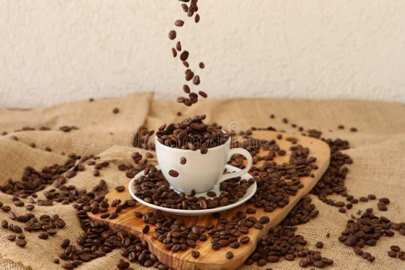Fallende Kaffeebohnen stockfotografie