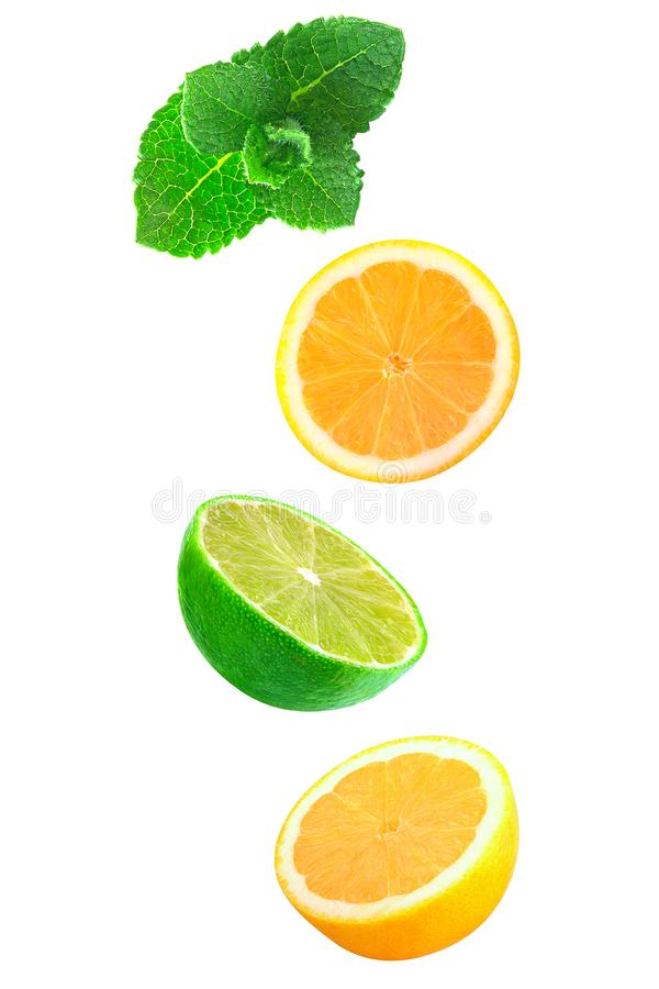 Fallende Stücke Minze, Zitrone und Kalk lokalisiert auf Weiß lizenzfreie stockfotografie
