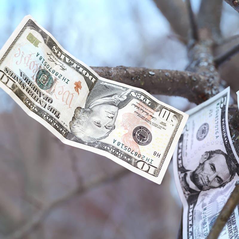 Fallendes Bargeld lizenzfreie stockfotos