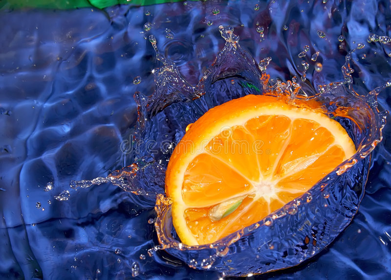 Fallengelassene Zitrusfrucht stockfotografie