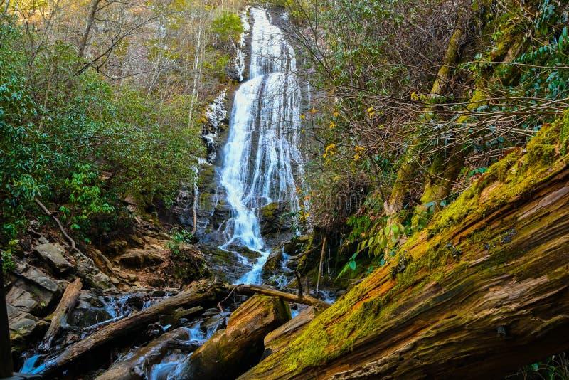 Download Faller mingoen arkivfoto. Bild av härlig, grönska, vattenfall - 106826442