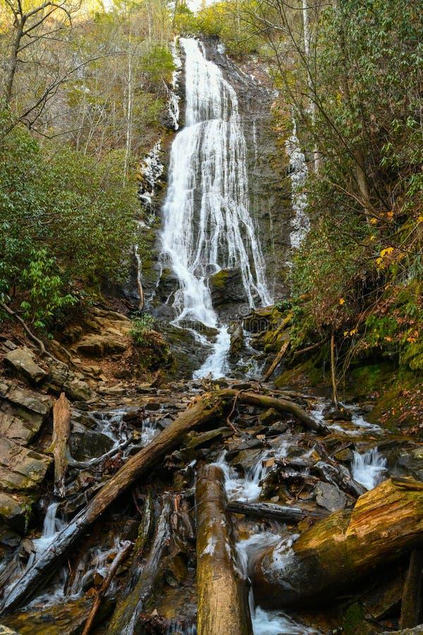 Download Faller mingoen arkivfoto. Bild av berg, skog, park, fotvandra - 106826484