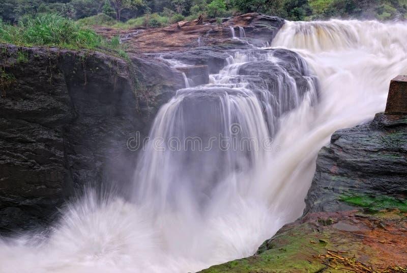 faller murchison uganda arkivbild