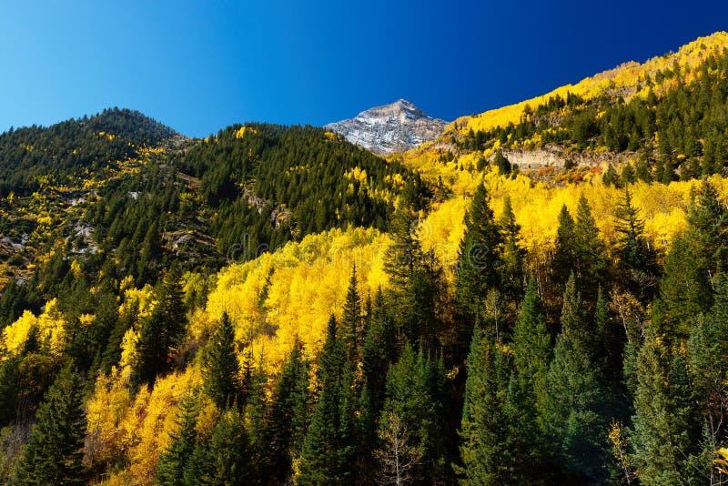 Fallfarbe in Crystal Mill City, Colorado stockbilder