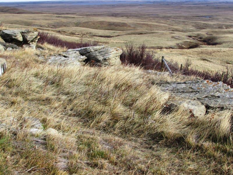 Fallgrasland Kopf-Zertrümmern-in am Büffel springt stockfotos