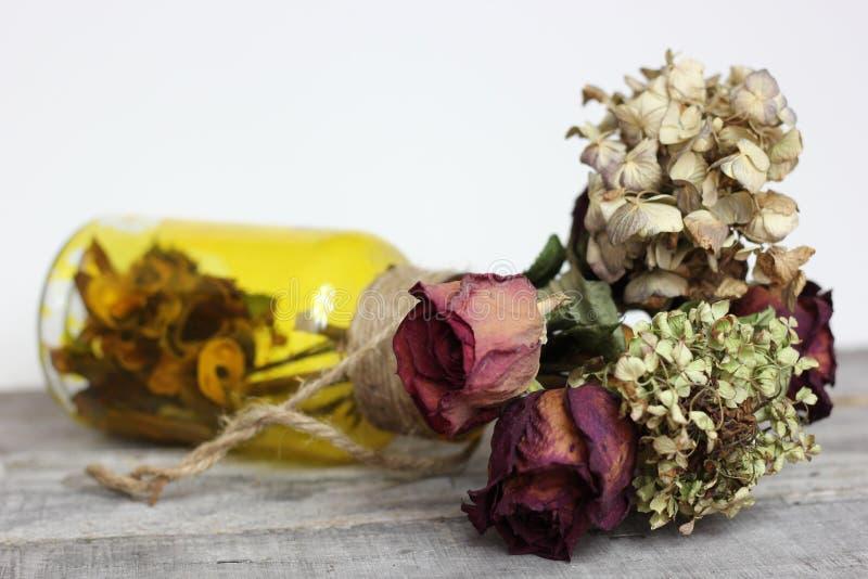 Fallin ` kwiaty obraz stock