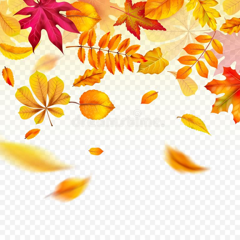 Falling autumn leaves. Flying yellow fall foliage. Autumnal frame border for banners, flyers and card vector template. Falling autumn leaves. Flying yellow fall royalty free illustration