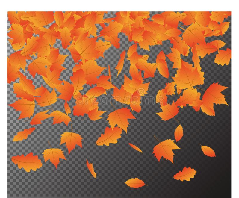 Falling Autumn Leaves vector, Isolated on transparent Background. Seasonal Card template for your d vector illustration