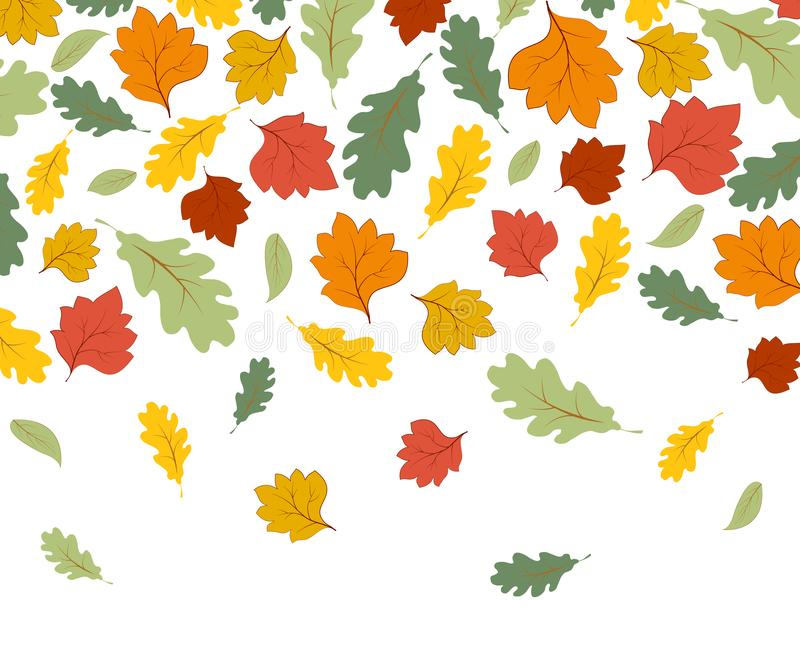 Falling autumn maple leaves isolated  white background vector illustration