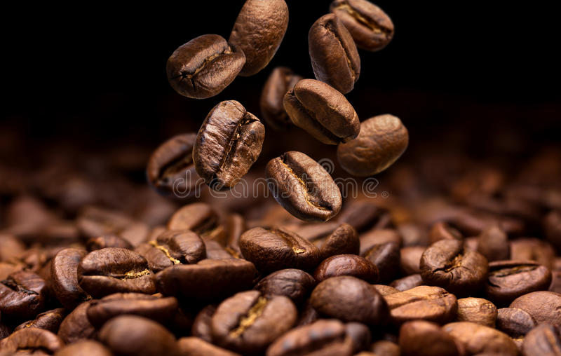 Falling coffee beans. Dark background with copy space royalty free stock images