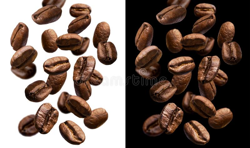 Falling coffee beans isolated on white and black background royalty free stock image