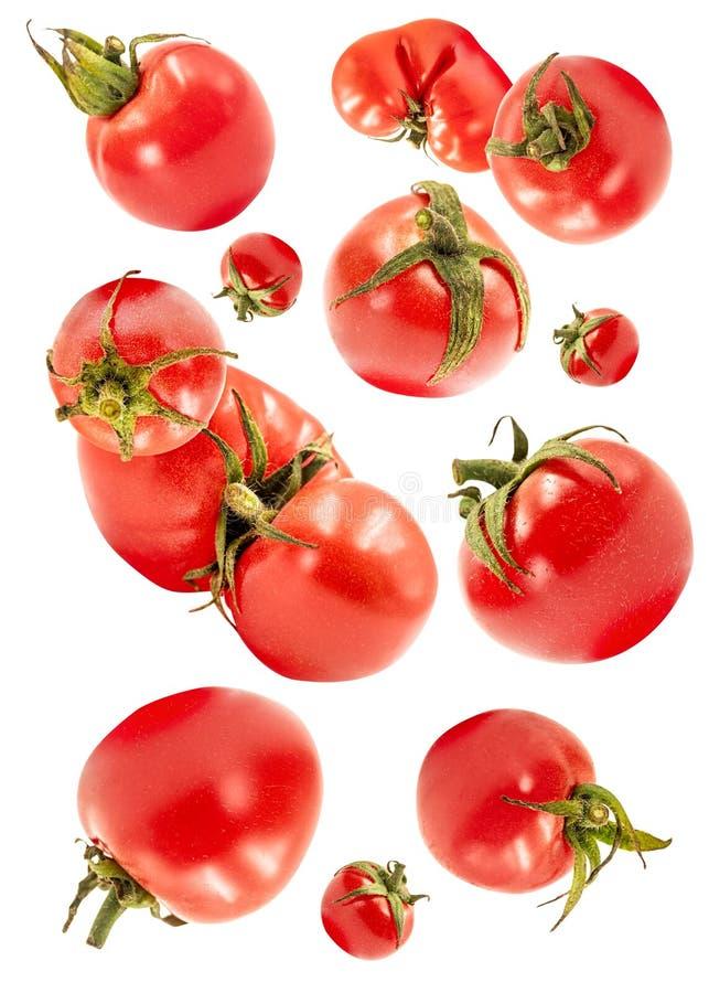 Falling flying tomato isolated on white background royalty free stock photography