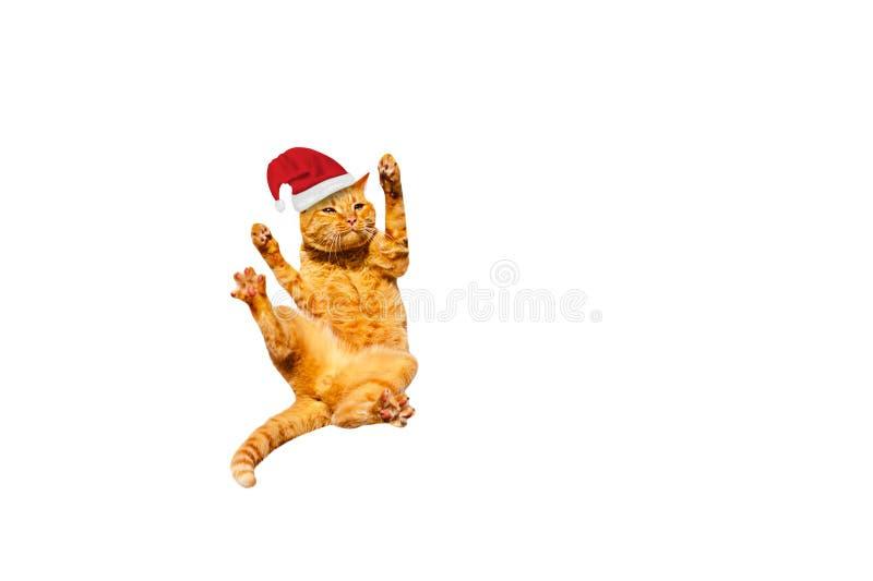 Falling Ginger kerstcat geïsoleerd op een witte achtergrond royalty-vrije stock afbeeldingen