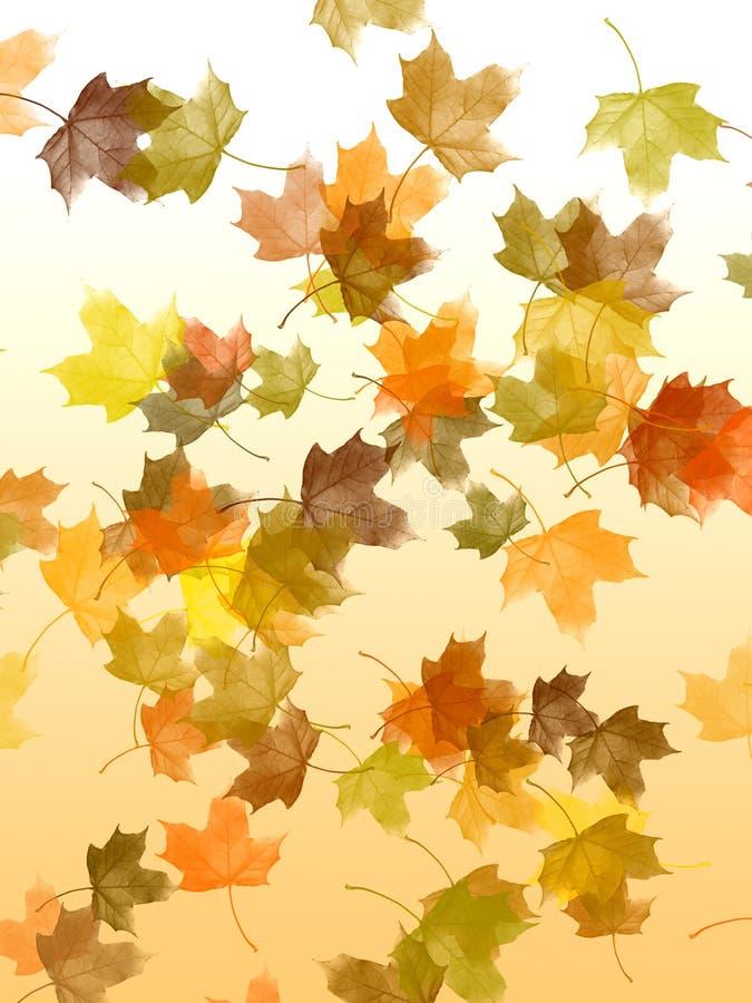 Falling leaves royalty free illustration