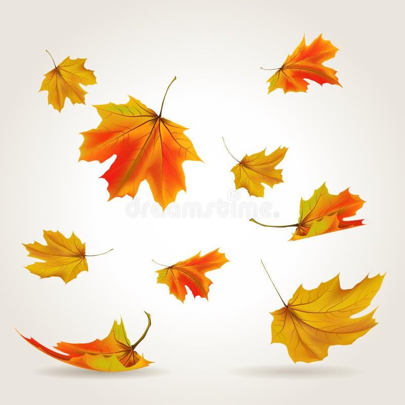 Falling leaves. Set, vector illustration stock illustration