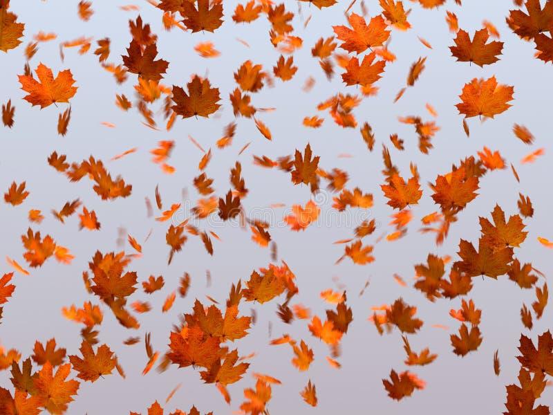 Falling Maple leaves. For Fall advertisement or something else vector illustration