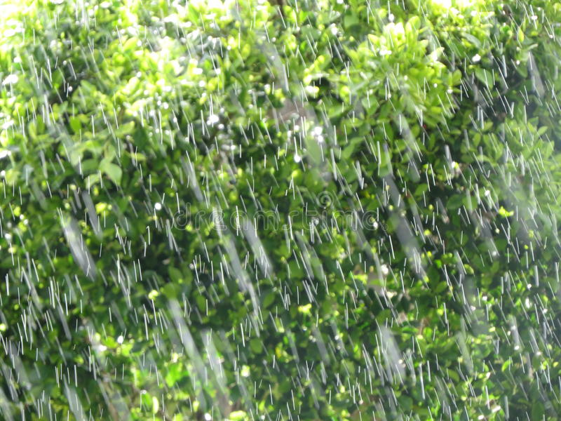 Falling raindrops royalty free stock photo