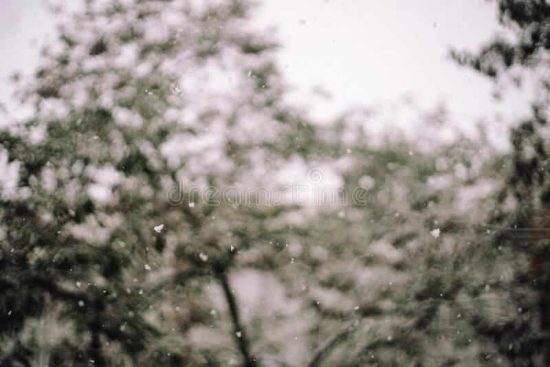 Falling Snow Free Public Domain Cc0 Image