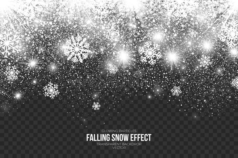Falling Snow Effect on Transparent Background Vector royalty free illustration