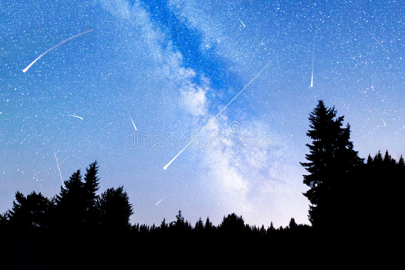 Falling stars pine trees silhouette Milky Way royalty free stock photos