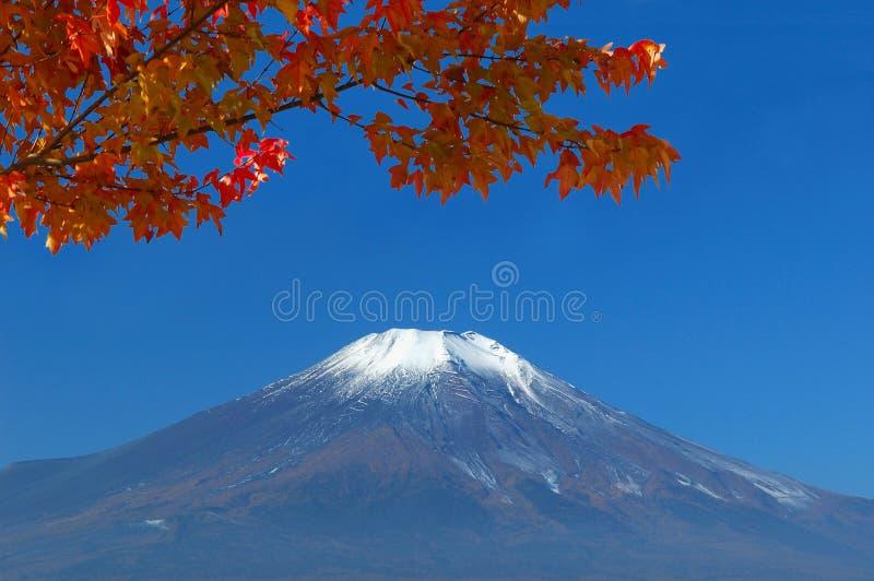 falll το fuji επικολλά στοκ εικόνες με δικαίωμα ελεύθερης χρήσης