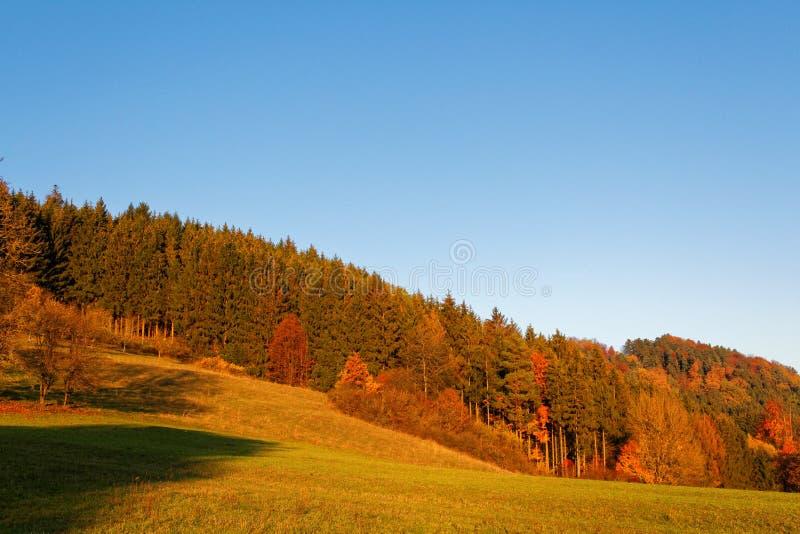 Falllandschaft Rolling Hills durch Sonnenuntergang lizenzfreies stockbild